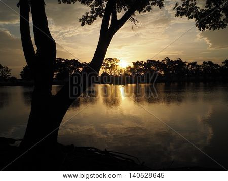 Tree silhouette sunset. Sky refection in the water. Background.