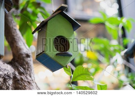 wooden birdhouse in green yellow and white hang on tree surrounded green tree plant in the garden or park outdoor