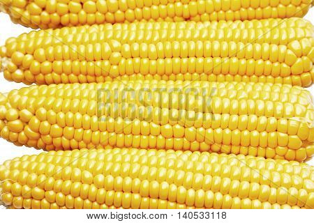 Freshly harvested sweetcorn as a background image