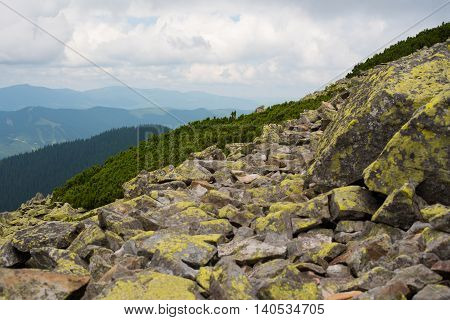 Mountain landscape. Amazing wild nature view of deep evergreen forest landscape on sunlight at middle of summer. Natural green scenery of cloud stones with moss on mountain slopes Ukraine Gorgany.