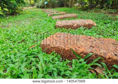 Rock footpath with grass in the garden.