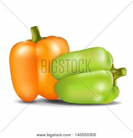 Orange and green sweet pepper isolated on white background. Vector illustration.