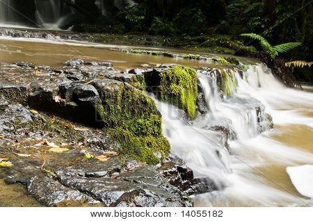 Partial View Purakanui Falls Catlins District South Otago