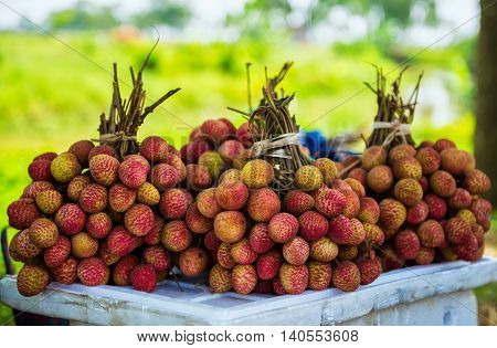 Thieu Litchi is the best litchi fruit. It is from Thanh Ha District, Hai Duong province, Vietnam.