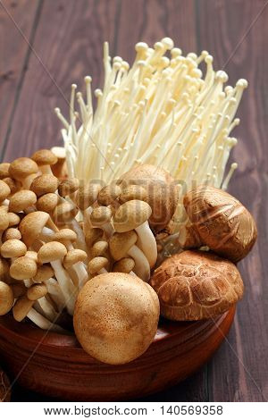 Mushroom three kind Shimeji Shiitake and Enokitake for healthy.
