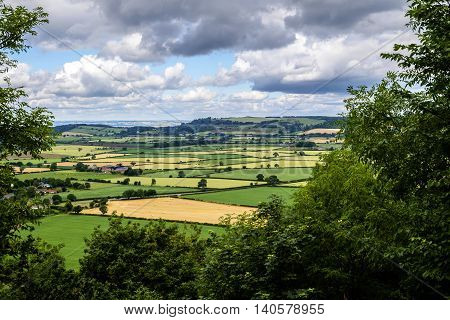 North Yorkshire England - landscape of typical Yorkshire countryside through a frame of trees with patchwork quilt effect fields of green and gold under a cloudy sky