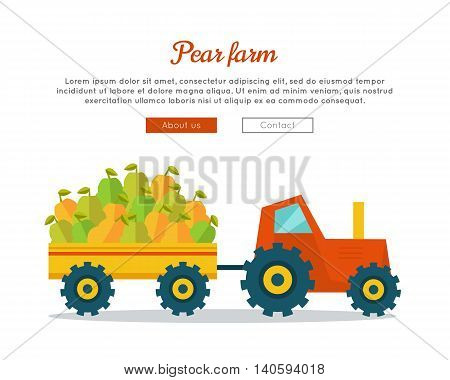 Pear farm conceptual banner. Flat design. Delivering fresh fruits from farm to market. Tractor with trailer carries big pears. Template for eco farm, fruit shop, transport company web page.
