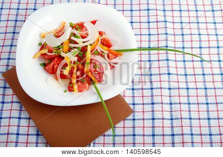 Small Portion Of Vegetarian Salad From Fresh Tomatoes, Onions And Bell Peppers