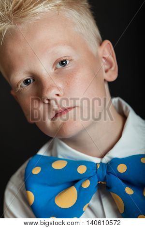 Serious Little Boy In Big Blue Bowtie