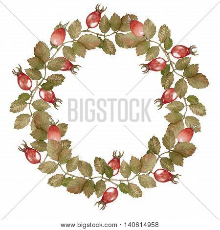 Wreath-ripened berries of rose hips for decorating and design. Handmade drawing. Watercolor.