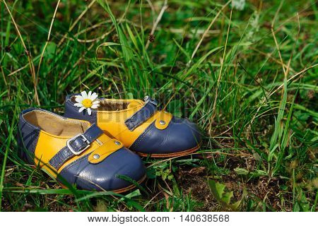 Pair vintage Baby shoes on green grass