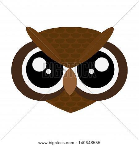 flat design cute owl cartoon icon vector illustration
