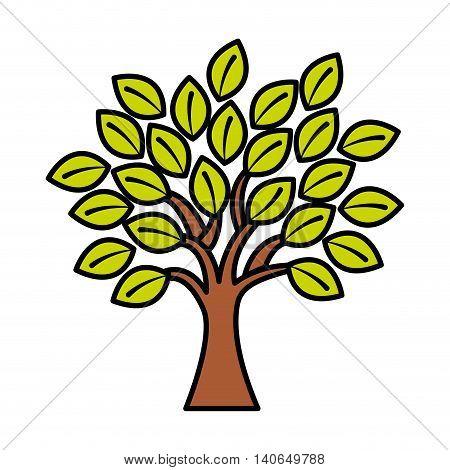 tree plant eco icon vector isolated graphic