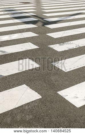 Nobody on Crosswalk in Black and white.