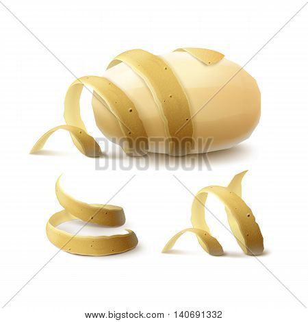 Vector Set of New Yellow Raw Whole Peeled Potato with twisted peel Close up Isolated on White Background