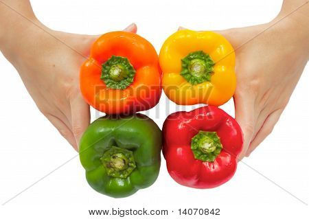 Sweet Paprika In Woman's Hands