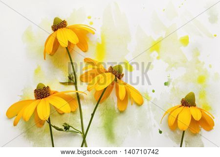 Black Eyed Susan flower in colorful paint