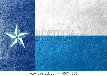 Flag Of Dallas County, Texas, Usa, Painted On Leather Texture
