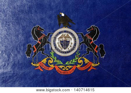 Flag Of Delaware County, Pennsylvania, Usa, Painted On Leather Texture