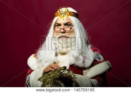 old bearded professor man wizard in jewellery golden zeus crown and glasses with long gray beard and white hair holding gold flower on purple background