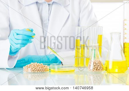 Asian Female Scientist Doing Soya Genetic Modification Research