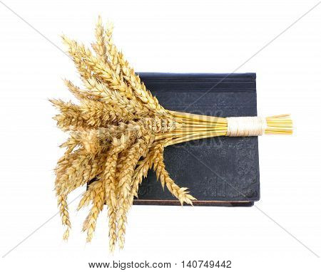 the sacred book of the Bible and ears of wheat as a symbol of spiritual and physical food photos to micro-stock