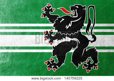 Flag Of East Flanders Province, Belgium, Painted On Leather Texture