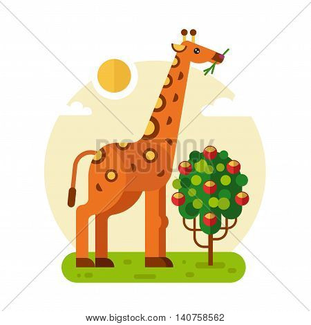 Flat design vector geometric illustration of cute giraffe eating leaves of the bush or three with fruits. Including sun, grass, clouds. Animal in the wild nature concept.