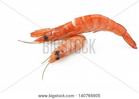 Group of fresh raw shrimp with lemon slice