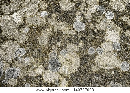 Cracks and lichen create texture background shapes and patterns on old stone brick
