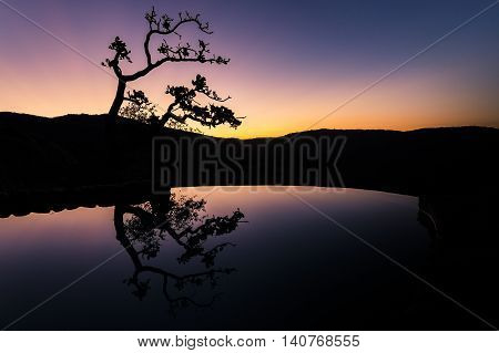 tree reflexion in water during sunset with african tree