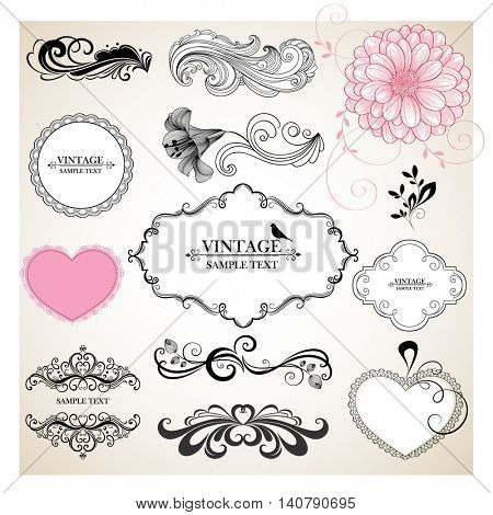 Set of calligraphic vintage floral hand-drawn elements with flower chrysanthemum and lily. Element for design. Vector illustration.