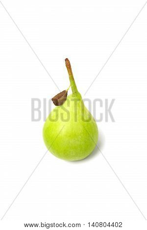 Pear With Small Dry Leaf