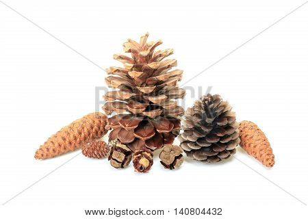 A Different cones isolated on white background