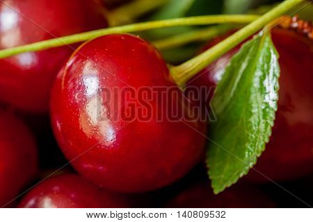 Berry of juicy ripe cherries. Pulp berries cherry used to increase hemoglobin in the blood, reduce the high pressure, strengthen capillaries to prevent bleeding