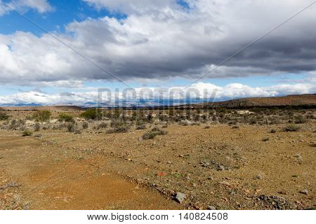 Dark Clouds On The Mountain - Prince Albert Landscape