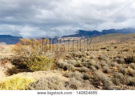 The Clouds Is Coming - Klaarstroom Landscape
