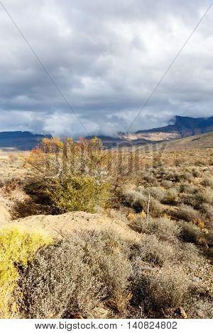 It Is Cloudy - Klaarstroom Landscape