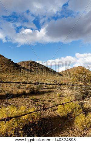 Barbed Wire - Klaarstroom Landscape