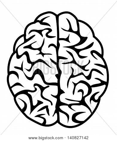 brain icon symbol illustration vector, clever concept