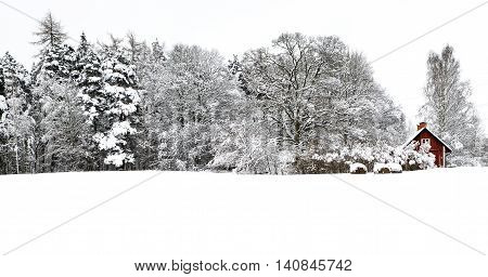 A typical Swedish home among the forest carpeted in snow.