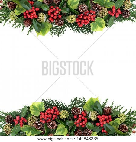 Winter and christmas background border with flora of holly and red berries, ivy, pine cones, cedar cypress and fir leaf sprigs over white with copy space.