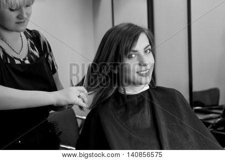 Hair cutting process. Hair dressing. Beauty salon. Girl in hair salon