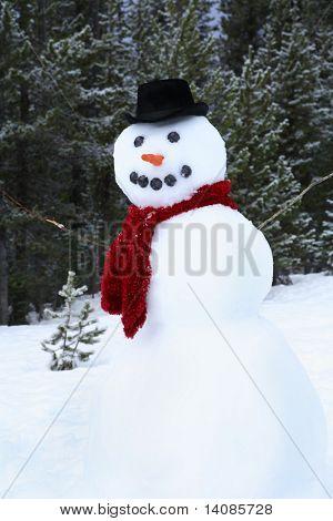 Snowman (vertical)