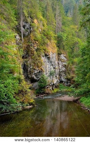 Beautiful river among the trees and rocks. Hornad River in Slovak Paradise National Park.