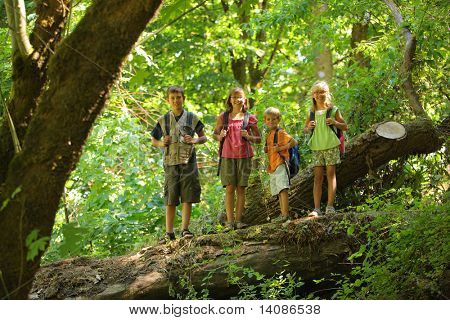 Portrait of four kids standing on log in woods