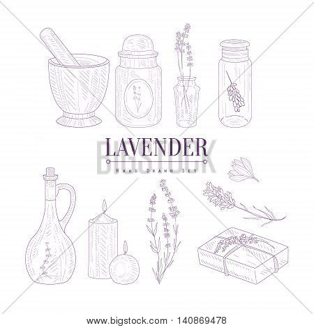 Lavender Products Clipart Elements Hand Drawn Realistic Detailed Sketch In Classy Simple Pencil Style On White Background