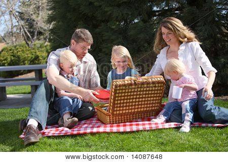 Family having a picnic at the park