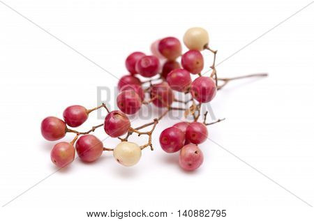 Pink Peppercorn Clusters Isolated On White