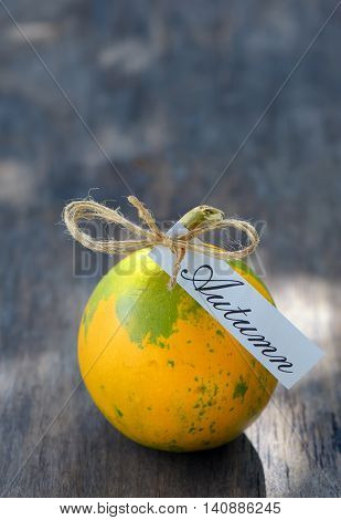 Ripe pumpkin on wooden background, close up